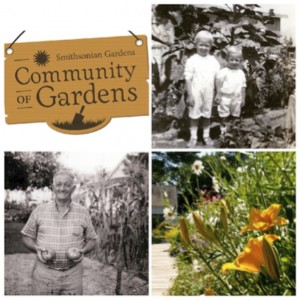 Images above are from the Community of Gardens project, courtesy of Smithsonian Gardens.