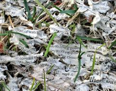 newspaper-in-field