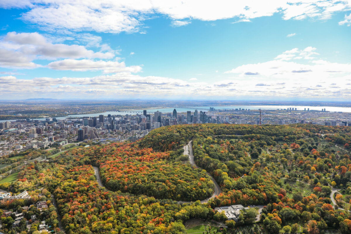 Mount Royal Park and Downtown Montreal © Jean-Francois Savaria and Tourisme Montreal