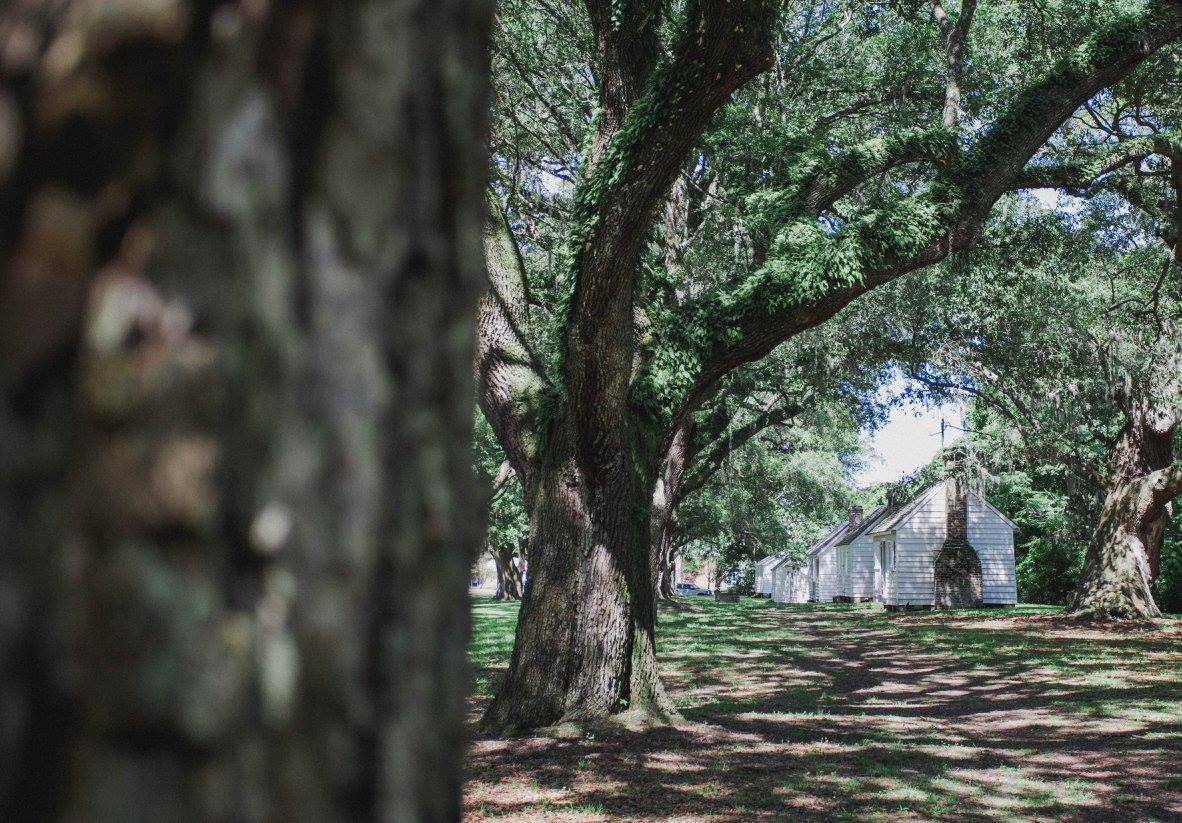 1 dollar tree woodland home decor ideas.htm national council on public history a romantic union  thoughts on  national council on public history a
